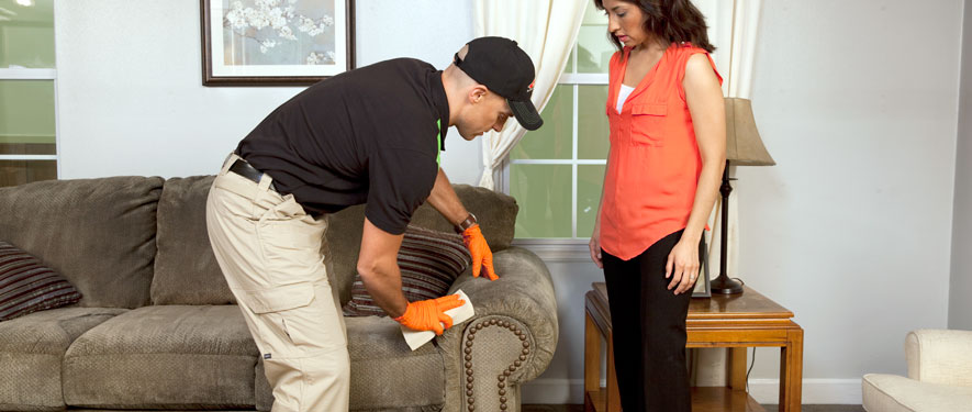 Mt Vernon, IL carpet upholstery cleaning